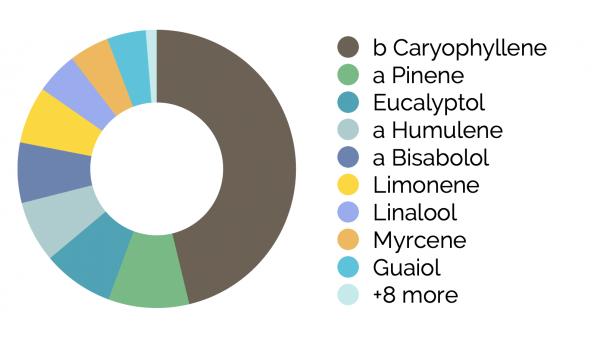 MendCBD+ Terpene Chart Full Spectrum