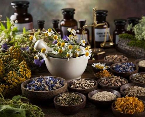 Hemp CBD Adaptogen herbs