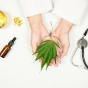 hemp-cbd-gut-biome-herbal-medicine